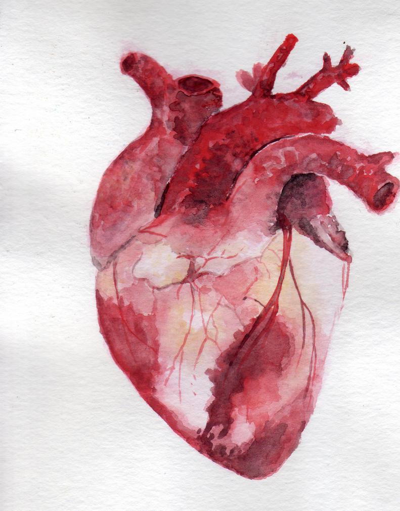 Heart. by NadAlei