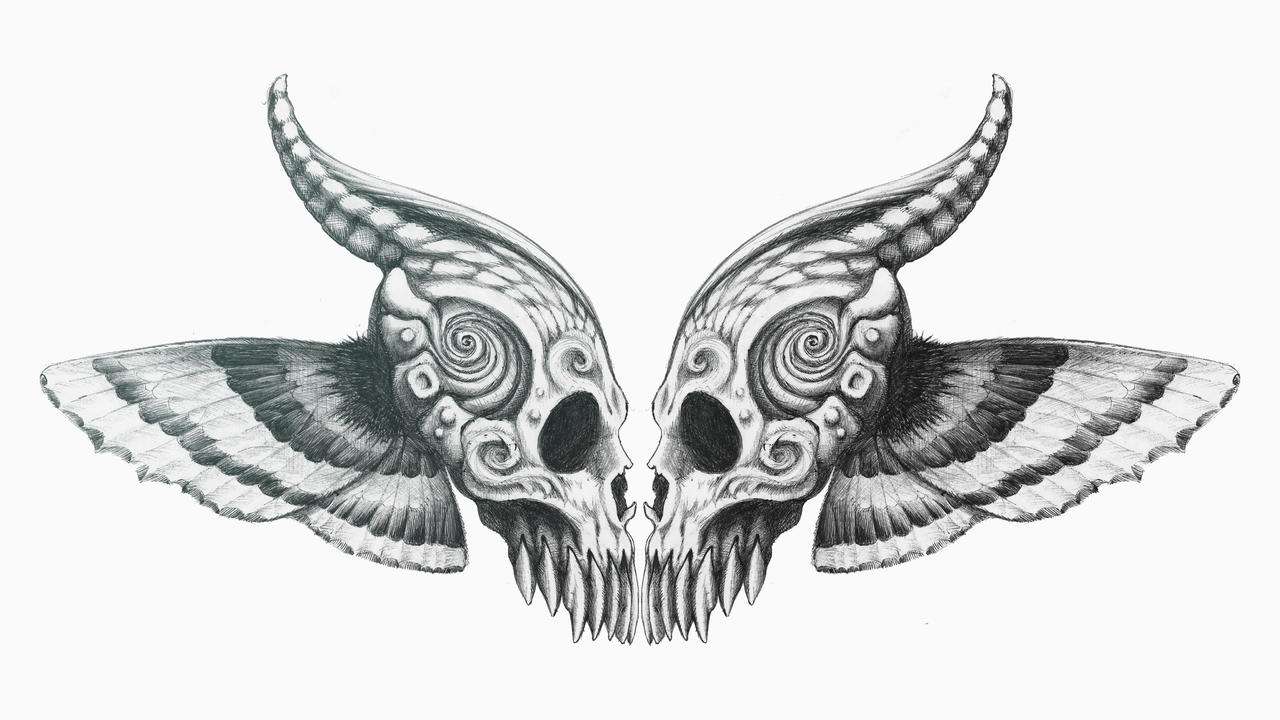 Butterfly skull mirrored by cid228 on deviantart for Cool drawings of butterflies