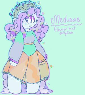 ~Medusae~ OC Reference