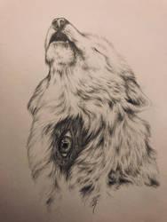The three eyed wolf