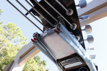 Rock N' Roller Coaster by dvn225