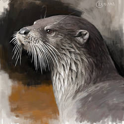 Otter study by Renum63