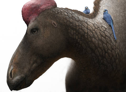 Edmontosaurus - texture practise by Renum63