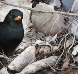 Blackbird 3 by Renum63