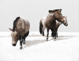 Ice Age horses by Renum63