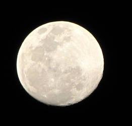 Silver Moon by gabmaia