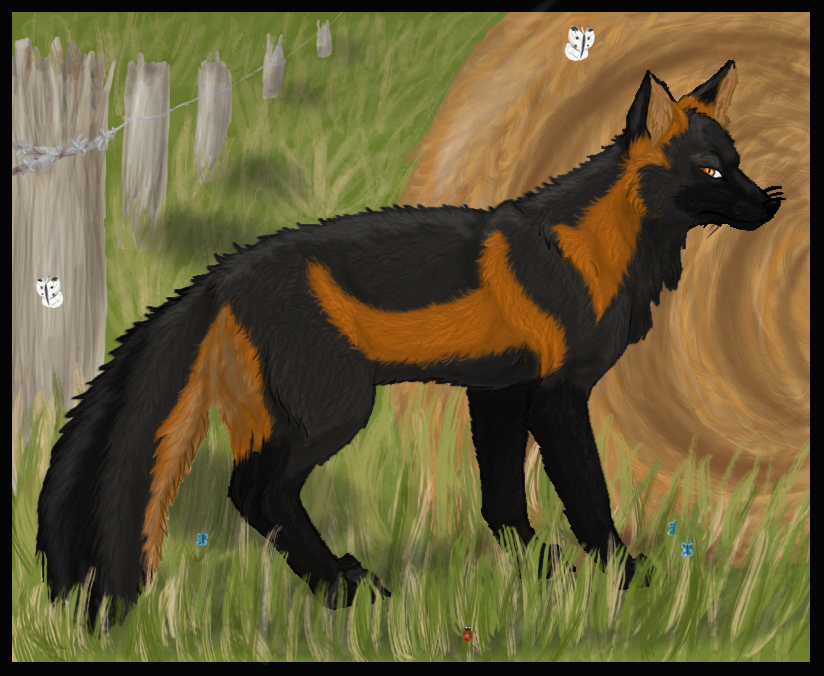 The Farm Fox by Ranshii