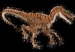 Jurassic Park: Female V.nublariensis