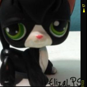 ElizaLPS's Profile Picture