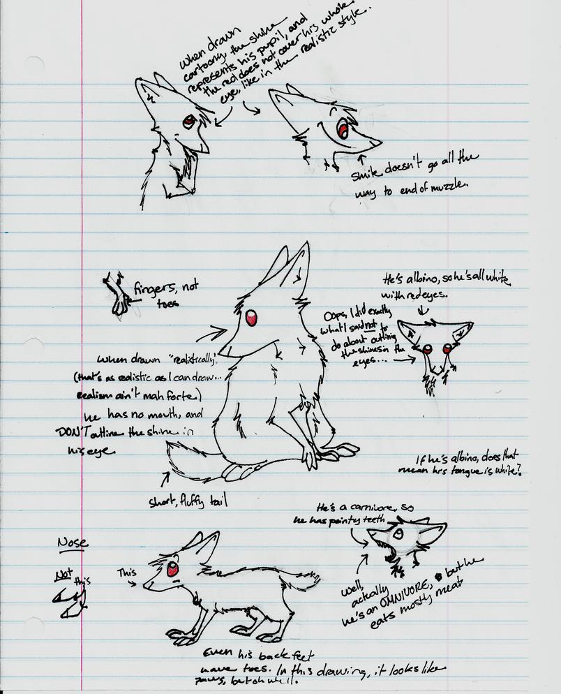 Modern Anatomy Of A Ferret Photos - Anatomy and Physiology Tissue ...