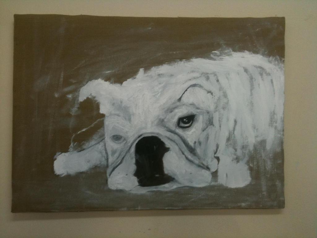 bulldog by sefalet