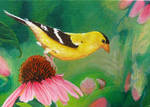 Goldfinch - acrylic painting