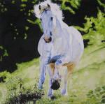Wind of Heaven - watercolor