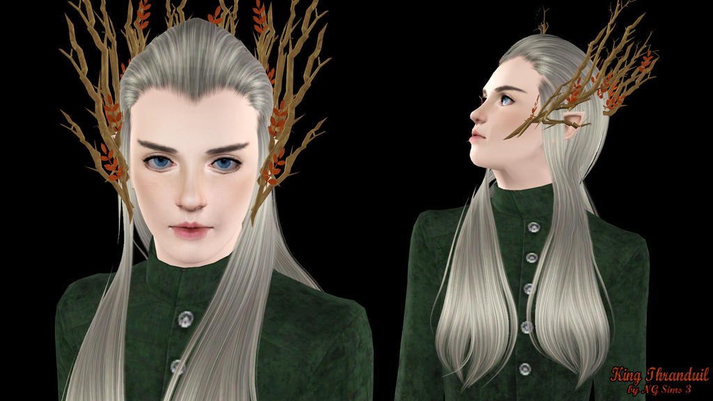 King Thranduil (4) by ng9