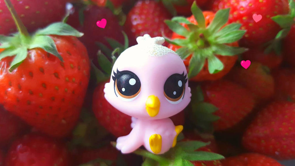 Strawberry (littlestpetshop) by ng9