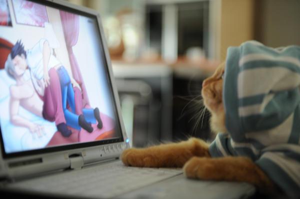 Fujoshi Cat by luckysevenstars