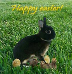 Happy Easter by kohinski