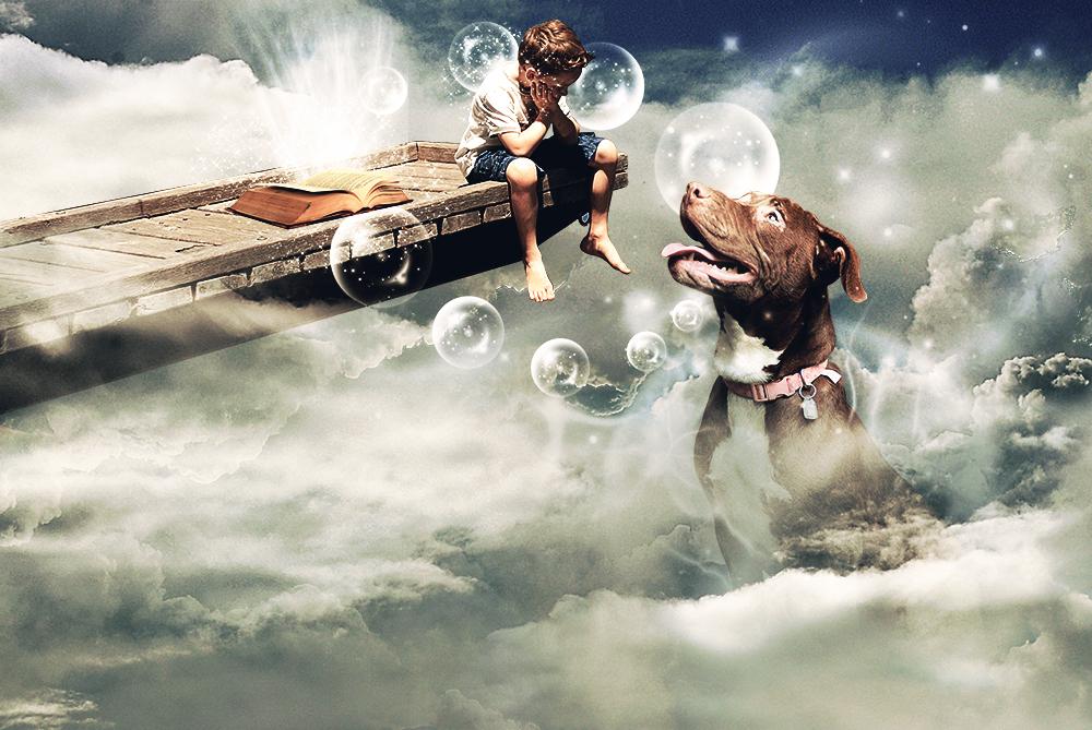 power of book ... by AleksandarN