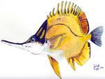 Forcepfish - Hawaiian Fish - Watercolor