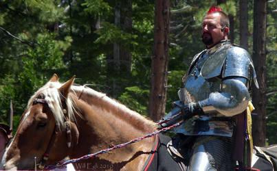 Knights of Mayhem - Valhalla 2010 by SurfTiki