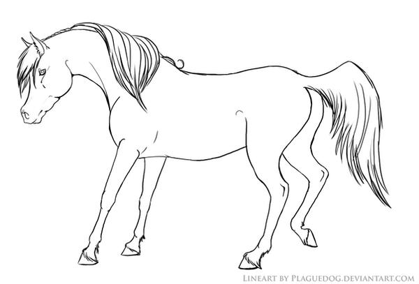 horse and dog coloring pages