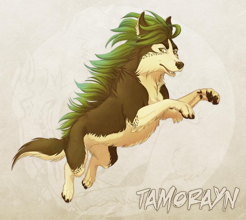Tamorayn by Plaguedog