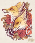 Red Fox Bloom