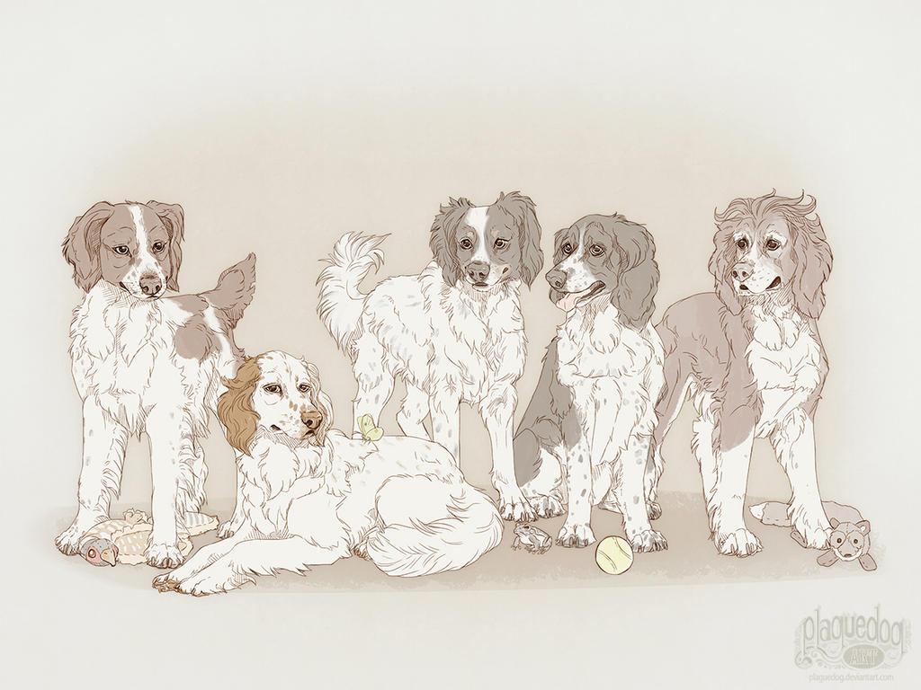 Jaded-Night dog portrait by Plaguedog