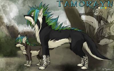 Tamorayn Ref Sheet by Plaguedog