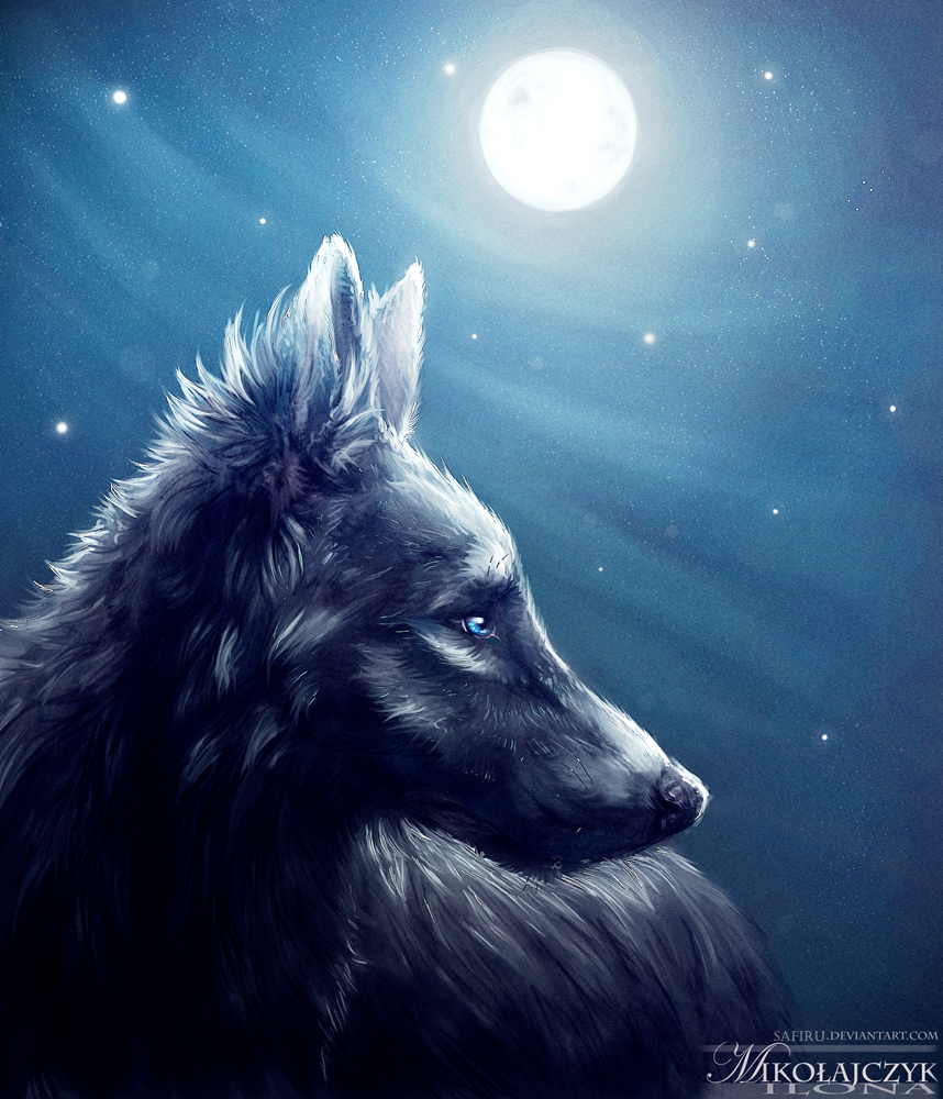 Full moon. by Safiru