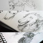 Sketches.