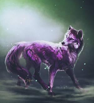 The purple.