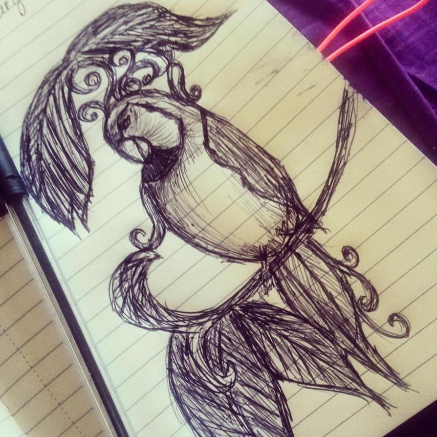 petit perroquet by lilivia91