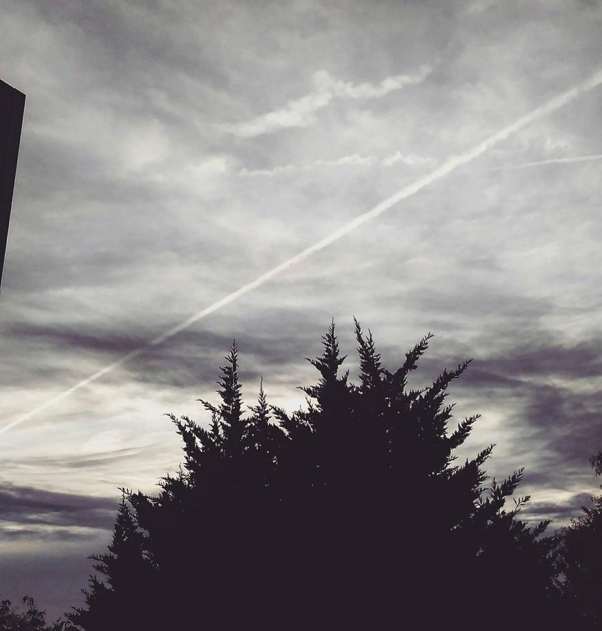 ciel argente by lilivia91