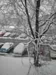 Light Michigan winter 1
