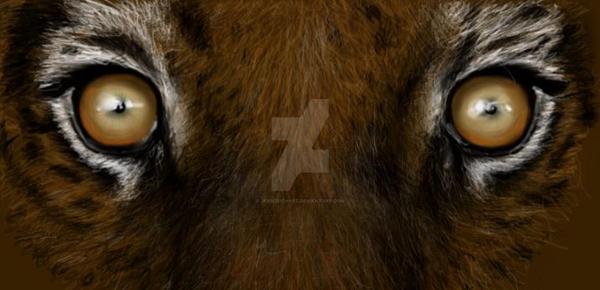 Eye Of The Tiger by JessiZeichnet