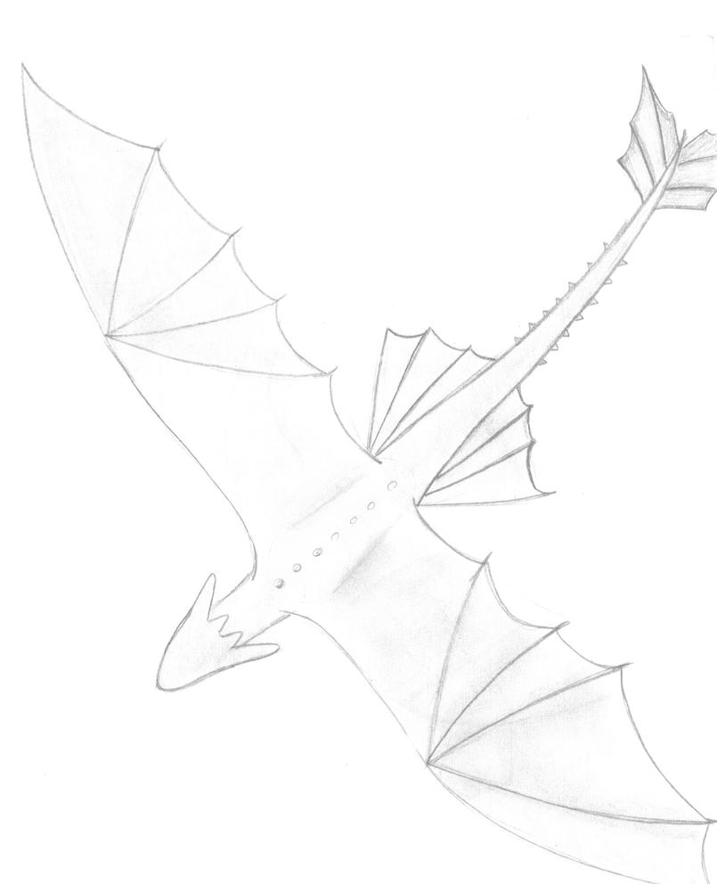 How to Draw Toothless Flying How to Draw Toothless