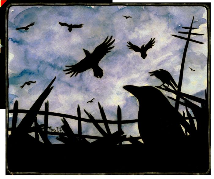 Crow Night by Vinzul