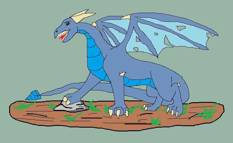 dragon by dragon-master-13