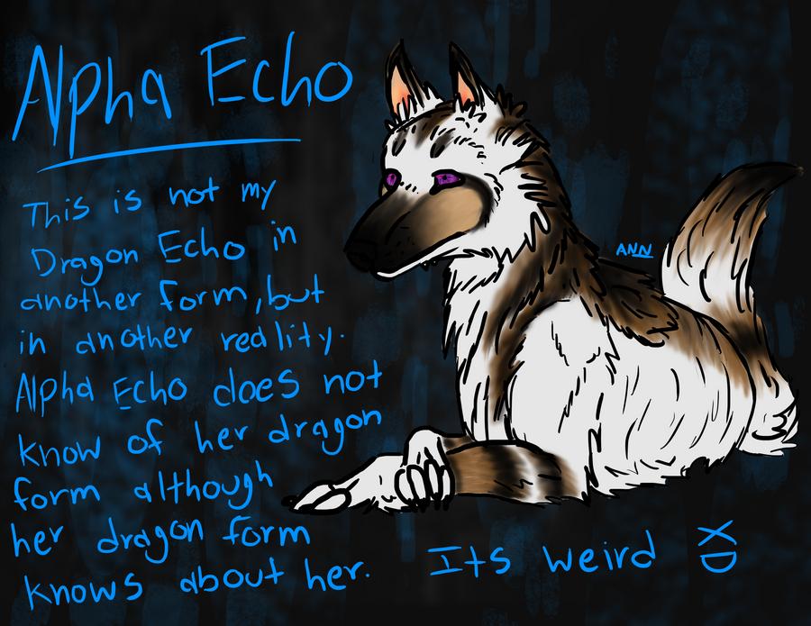 Alpha Echo by dragon-master-13