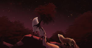 [Fall Colors] Among Stars
