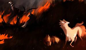 FireStorm - NOTHAPPYNOTHAPPY