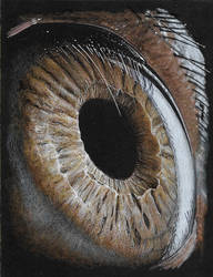 Eye by AndyGill1964