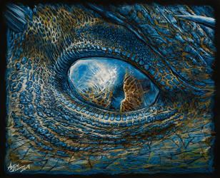 Dragon Eye by AndyGill1964