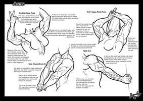 Tutorial: Arms 2