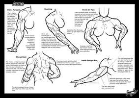 Tutorial: Arms 3
