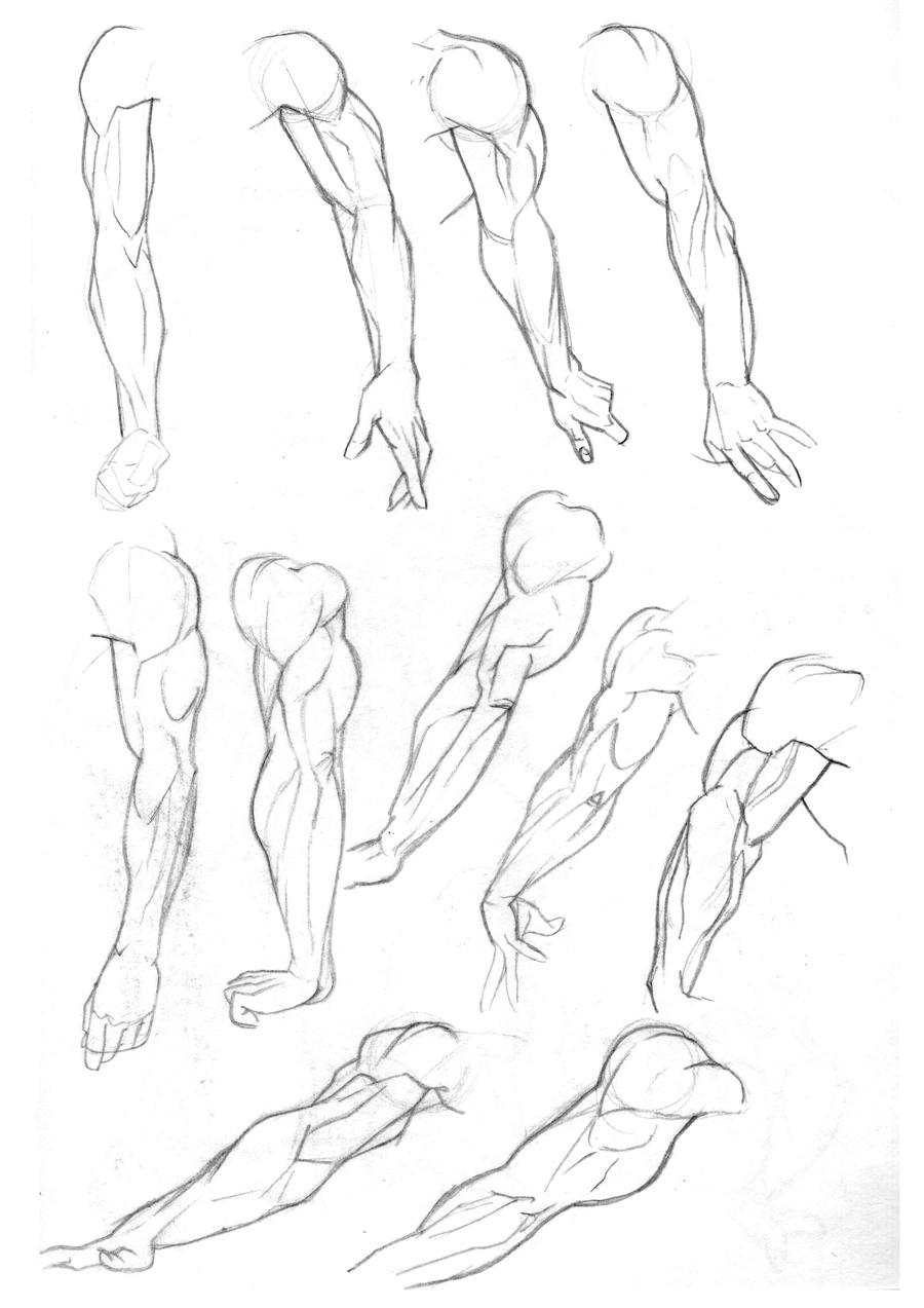 Sketchbook: Arms Pg2 by Bambs79