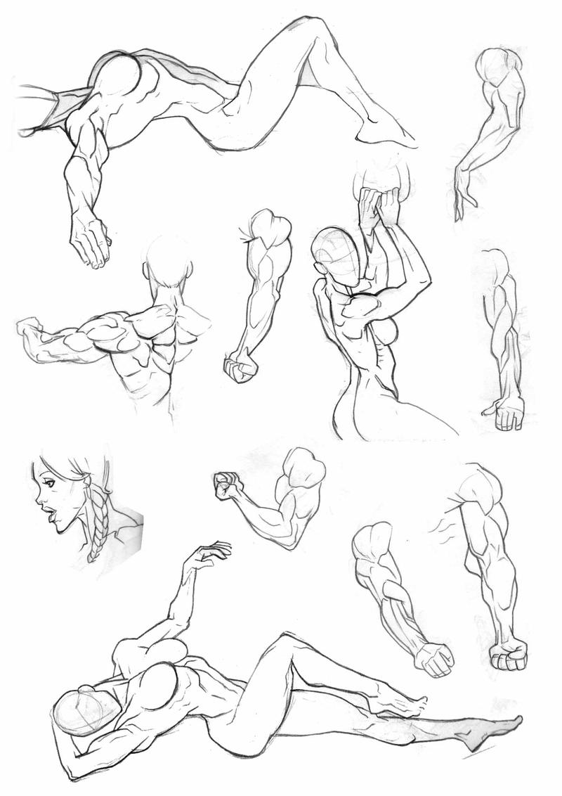 how to draw muscular women