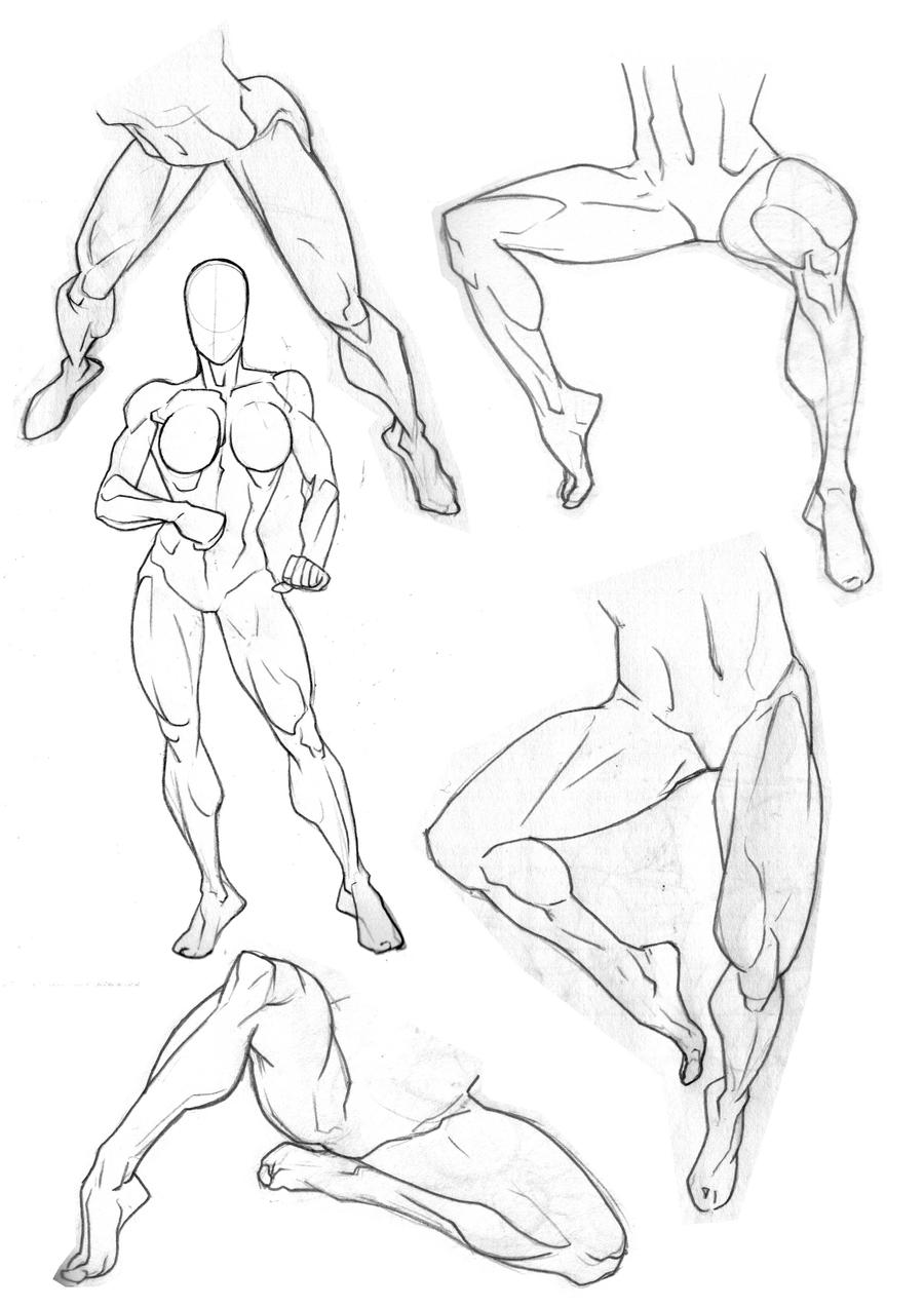 Calf Muscle Drawings,Muscle.Printable Coloring Pages Free Download
