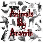 26 Animals PS Brushes